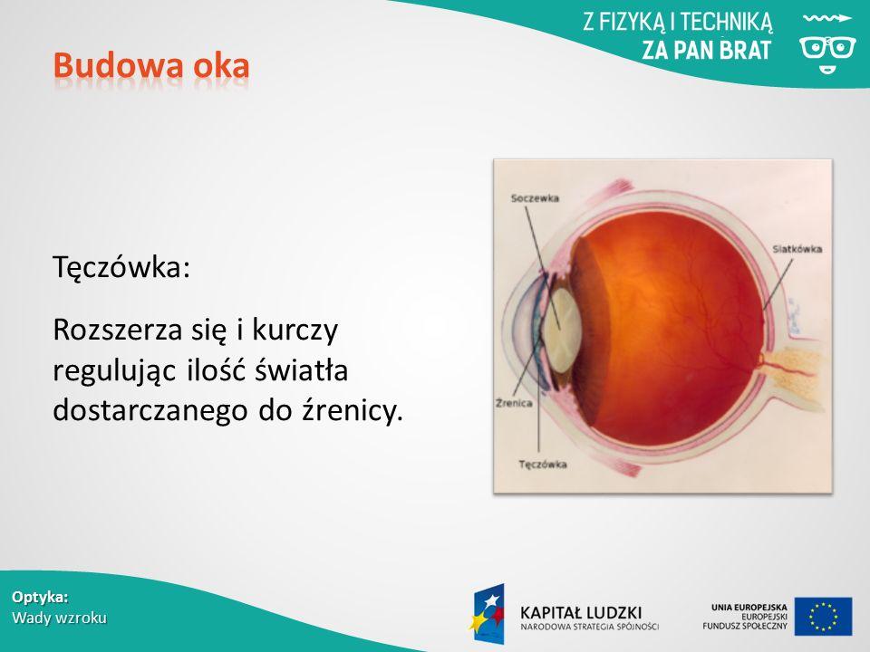 Optyka: Wady wzroku Tęczówka: Rozszerza się i kurczy regulując ilość światła dostarczanego do źrenicy.