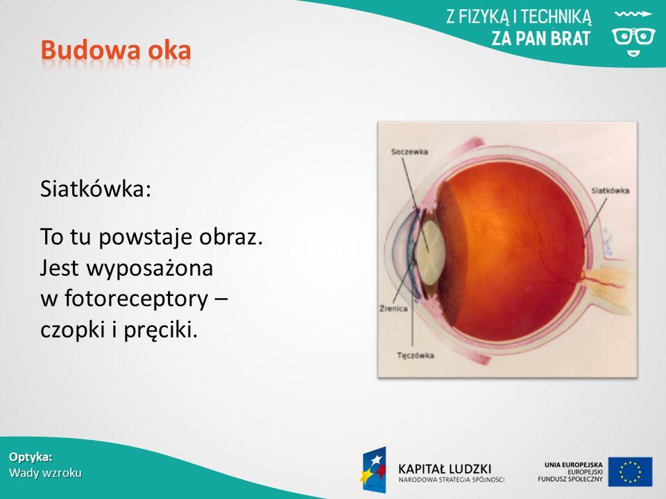 Optyka: Wady wzroku Siatkówka: To tu powstaje obraz.