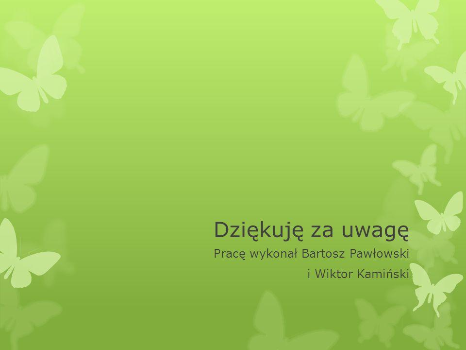 Dziękuję za uwagę Pracę wykonał Bartosz Pawłowski i Wiktor Kamiński
