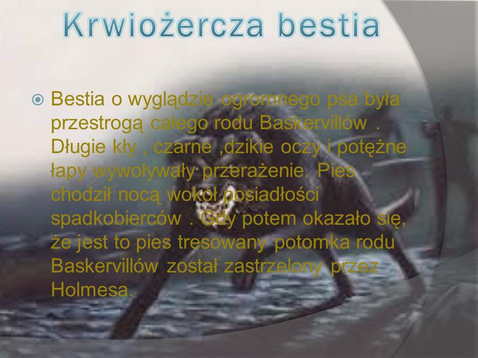 Bestia o wyglądzie ogromnego psa była przestrogą całego rodu Baskervillów.