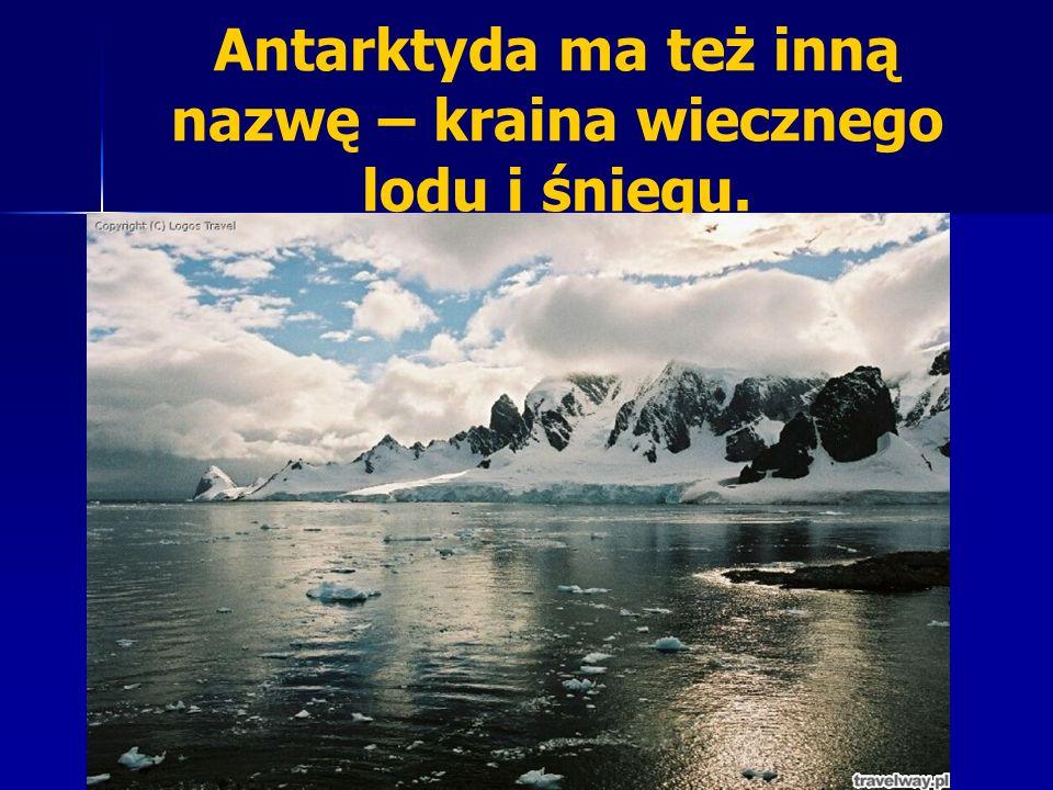 Antarktyda ma też inną nazwę – kraina wiecznego lodu i śniegu.