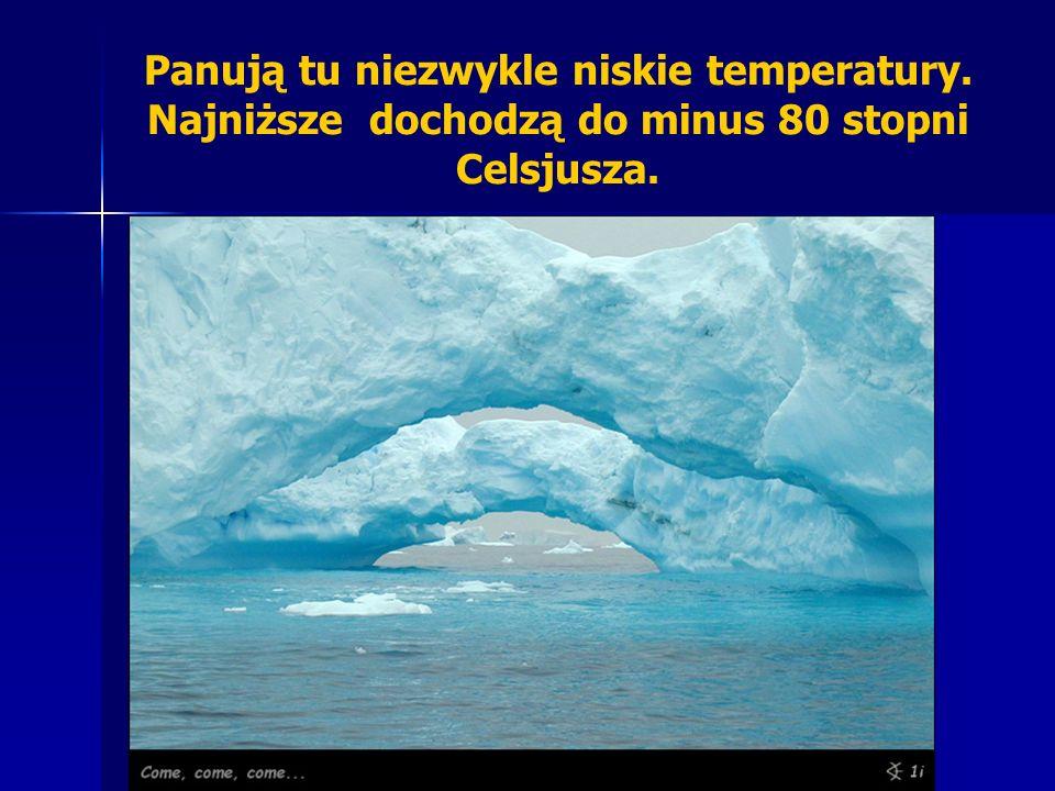 Panują tu niezwykle niskie temperatury. Najniższe dochodzą do minus 80 stopni Celsjusza.