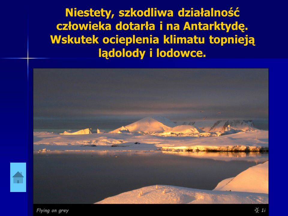 Niestety, szkodliwa działalność człowieka dotarła i na Antarktydę. Wskutek ocieplenia klimatu topnieją lądolody i lodowce.