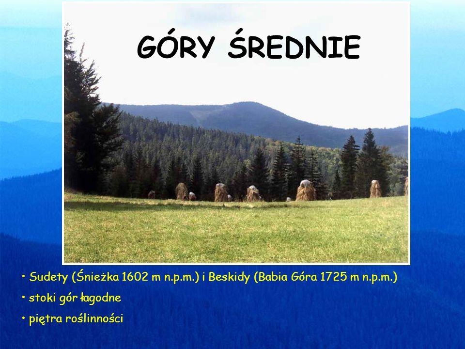 Sudety (Śnieżka 1602 m n.p.m.) i Beskidy (Babia Góra 1725 m n.p.m.) stoki gór łagodne piętra roślinności GÓRY ŚREDNIE