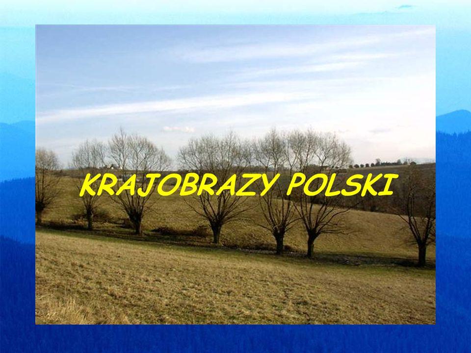 Jak widać z mapy hipsometrycznej, w Polsce występują niziny, wyżyny i góry.