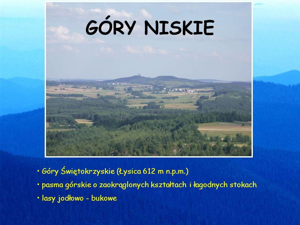 Góry Świętokrzyskie (Łysica 612 m n.p.m.) pasma górskie o zaokrąglonych kształtach i łagodnych stokach lasy jodłowo - bukowe GÓRY NISKIE