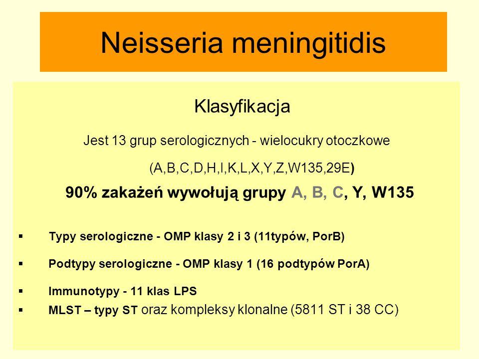 Neisseria meningitidis Klasyfikacja Jest 13 grup serologicznych - wielocukry otoczkowe (A,B,C,D,H,I,K,L,X,Y,Z,W135,29E) 90% zakażeń wywołują grupy A,