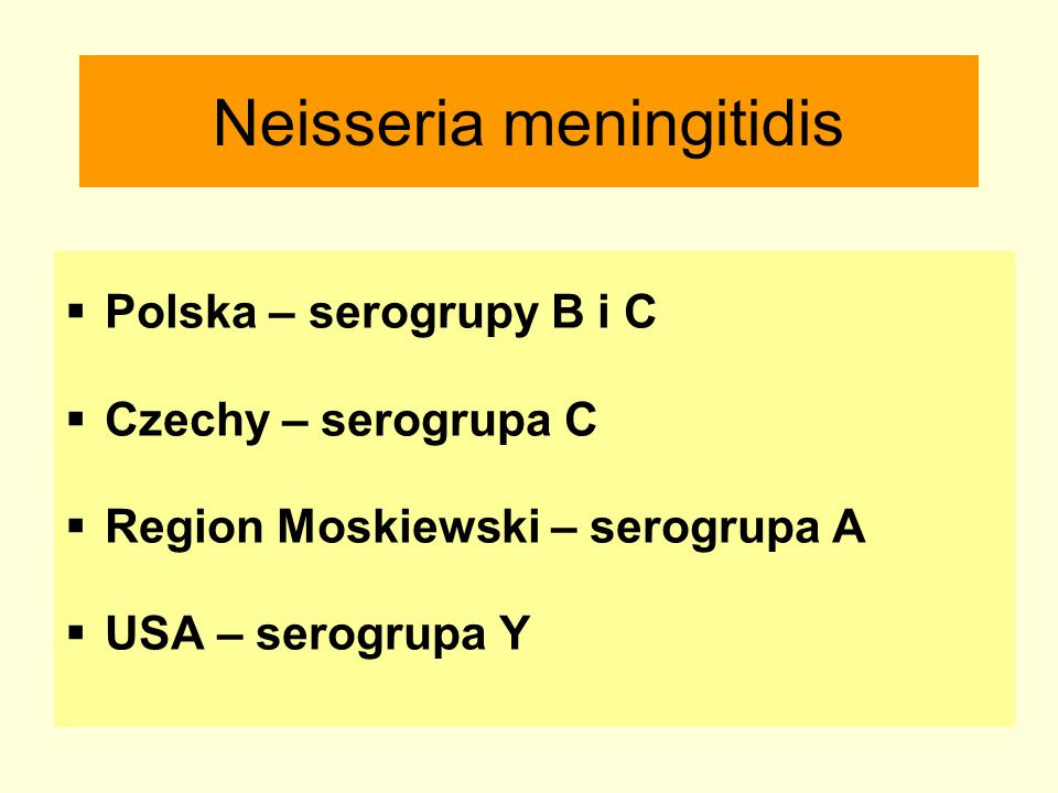 Neisseria meningitidis  Polska – serogrupy B i C  Czechy – serogrupa C  Region Moskiewski – serogrupa A  USA – serogrupa Y