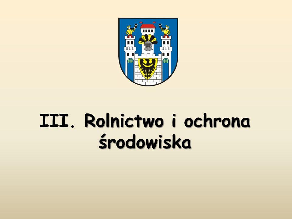 Po spotkaniu, pod tablicą poświęconą Ofiarom Katynia przy Kościele pw.