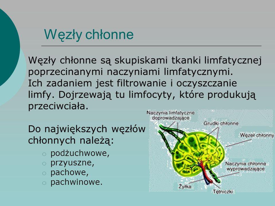 Odpowiedź immunologiczna  Antygen jest to ciało obce dla naszego organizmu.