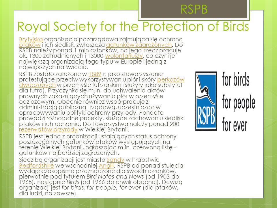 Royal Society for the Protection of Birds BrytyjskaBrytyjska organizacja pozarządowa zajmująca się ochroną ptaków i ich siedlisk, zwłaszcza gatunków zagrożonych.