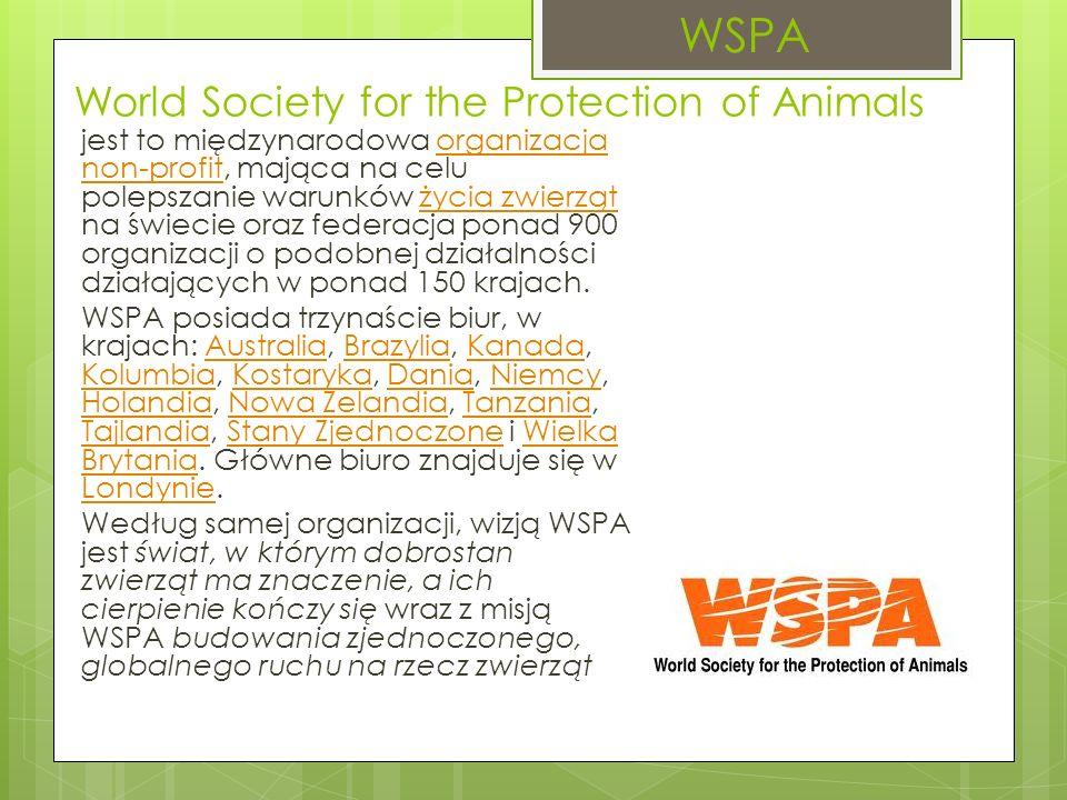 World Society for the Protection of Animals jest to międzynarodowa organizacja non-profit, mająca na celu polepszanie warunków życia zwierząt na świecie oraz federacja ponad 900 organizacji o podobnej działalności działających w ponad 150 krajach.organizacja non-profitżycia zwierząt WSPA posiada trzynaście biur, w krajach: Australia, Brazylia, Kanada, Kolumbia, Kostaryka, Dania, Niemcy, Holandia, Nowa Zelandia, Tanzania, Tajlandia, Stany Zjednoczone i Wielka Brytania.
