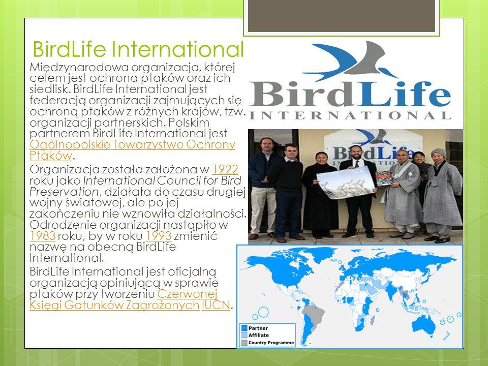 BirdLife International Międzynarodowa organizacja, której celem jest ochrona ptaków oraz ich siedlisk.