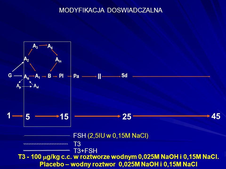 AsAs A1A1 A2A2 A3A3 A4A4 A In BPl II 25 Sd 45 G Pa 15 5 1 ApAp A al MODYFIKACJA DOSWIADCZALNA T3 - 100  g/kg c.c.