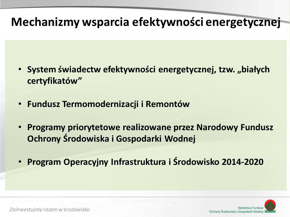 Zainwestujmy razem w środowisko Mechanizmy wsparcia efektywności energetycznej System świadectw efektywności energetycznej, tzw.