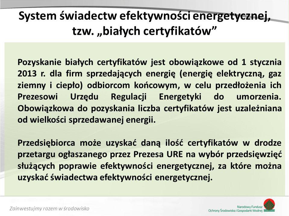 Zainwestujmy razem w środowisko System świadectw efektywności energetycznej, tzw.