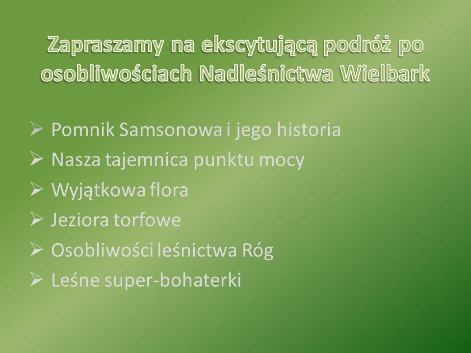  Pomnik Samsonowa i jego historia  Nasza tajemnica punktu mocy  Wyjątkowa flora  Jeziora torfowe  Osobliwości leśnictwa Róg  Leśne super-bohaterki