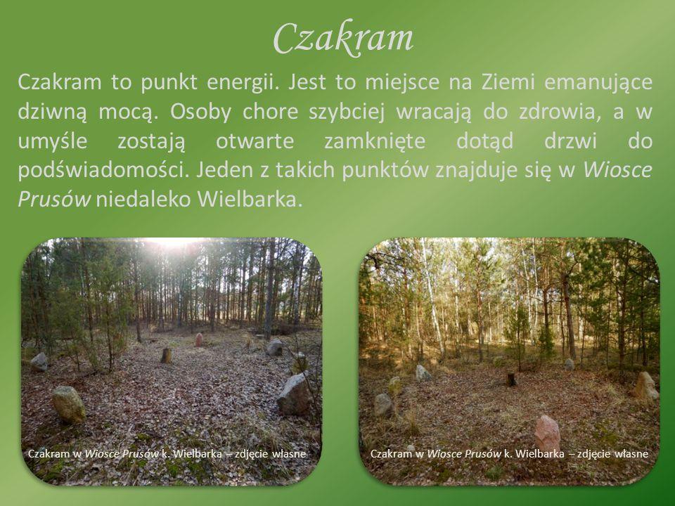 Czakram Czakram to punkt energii. Jest to miejsce na Ziemi emanujące dziwną mocą.