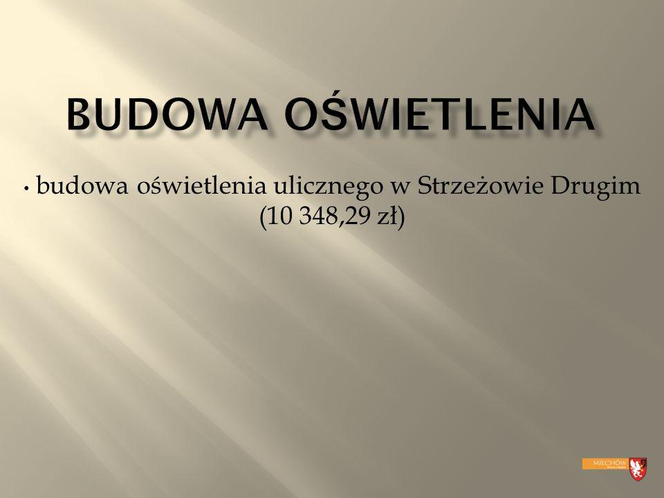 budowa oświetlenia ulicznego w Strzeżowie Drugim (10 348,29 zł)
