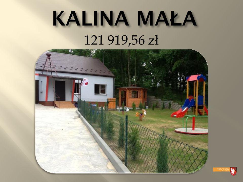 KALINA MA Ł A 121 919,56 zł