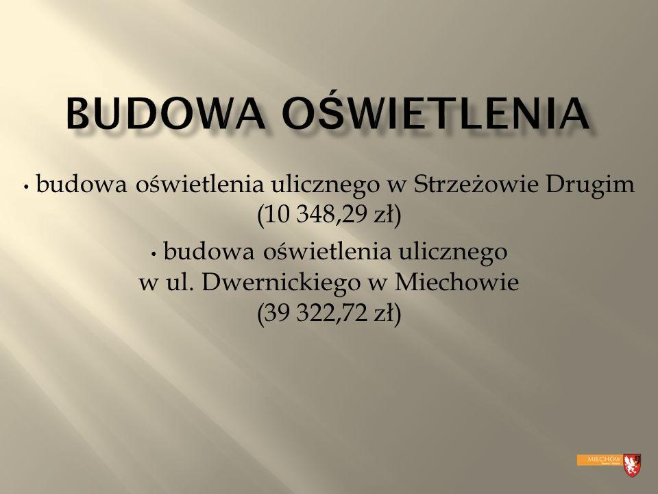 budowa oświetlenia ulicznego w ul. Dwernickiego w Miechowie (39 322,72 zł)