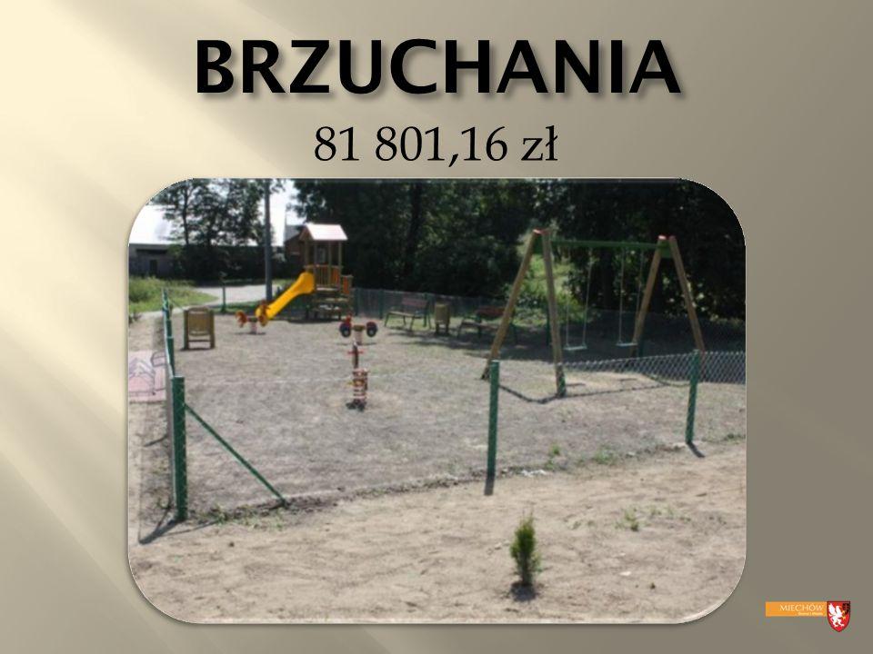 BRZUCHANIA 81 801,16 zł