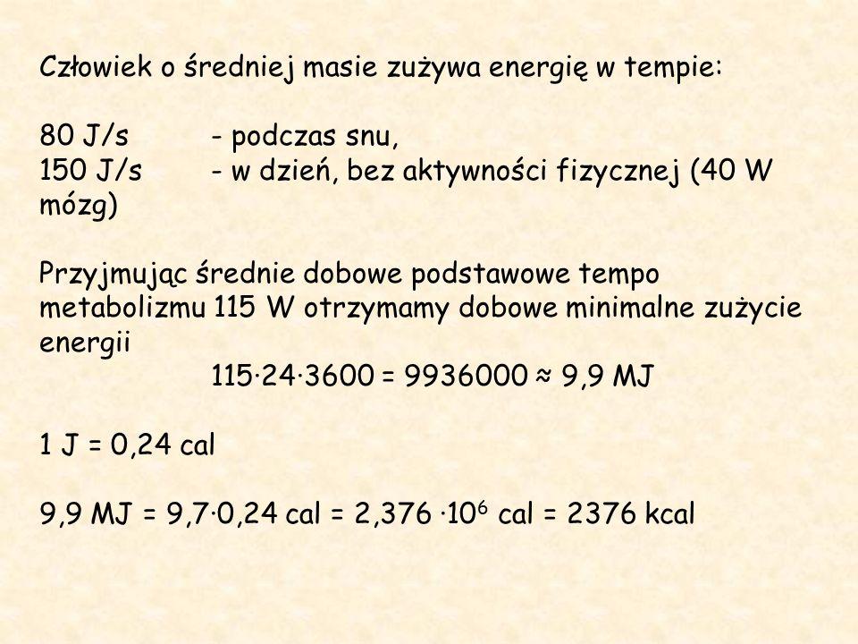 Człowiek o średniej masie zużywa energię w tempie: 80 J/s - podczas snu, 150 J/s- w dzień, bez aktywności fizycznej (40 W mózg) Przyjmując średnie dobowe podstawowe tempo metabolizmu 115 W otrzymamy dobowe minimalne zużycie energii 115·24·3600 = 9936000 ≈ 9,9 MJ 1 J = 0,24 cal 9,9 MJ = 9,7·0,24 cal = 2,376 ·10 6 cal = 2376 kcal