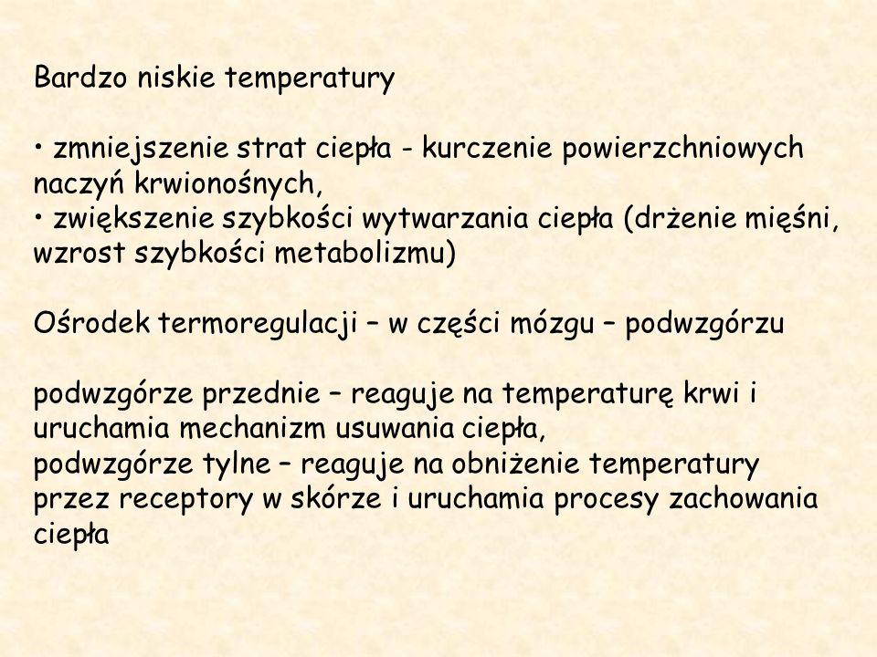 Bardzo niskie temperatury zmniejszenie strat ciepła - kurczenie powierzchniowych naczyń krwionośnych, zwiększenie szybkości wytwarzania ciepła (drżenie mięśni, wzrost szybkości metabolizmu) Ośrodek termoregulacji – w części mózgu – podwzgórzu podwzgórze przednie – reaguje na temperaturę krwi i uruchamia mechanizm usuwania ciepła, podwzgórze tylne – reaguje na obniżenie temperatury przez receptory w skórze i uruchamia procesy zachowania ciepła