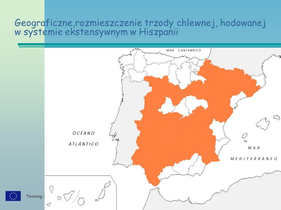 Twinning PL/06/IB/AG/02/TL Geograficzne,rozmieszczenie trzody chlewnej, hodowanej w systemie ekstensywnym w Hiszpanii
