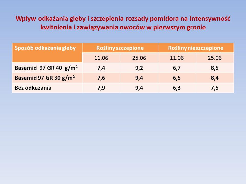 Wpływ odkażania gleby i szczepienia rozsady pomidora na intensywność kwitnienia i zawiązywania owoców w pierwszym gronie Sposób odkażania glebyRośliny szczepioneRośliny nieszczepione 11.0625.0611.0625.06 Basamid 97 GR 40 g/m 2 7,49,26,78,5 Basamid 97 GR 30 g/m 2 7,69,46,58,4 Bez odkażania7,99,46,37,5