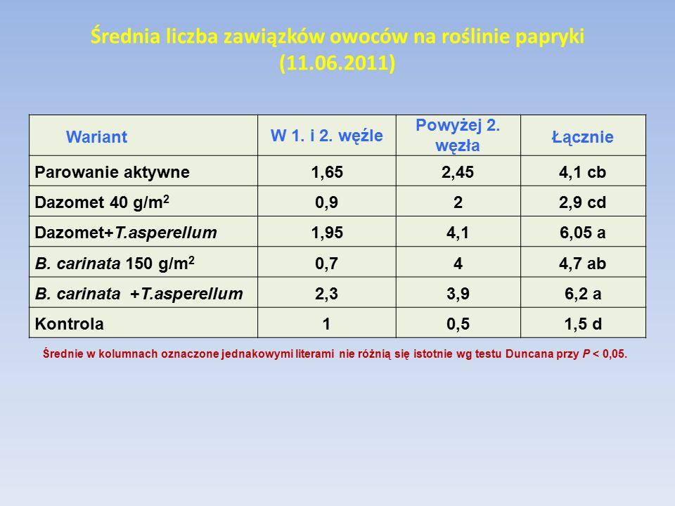 Średnia liczba zawiązków owoców na roślinie papryki (11.06.2011) Wariant W 1. i 2. węźle Powyżej 2. węzła Łącznie Parowanie aktywne1,652,45 4,1 cb Daz