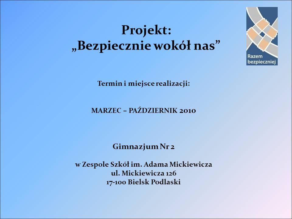 Znaczenie realizacji projektu w kontekście kierunków i założeń programu.