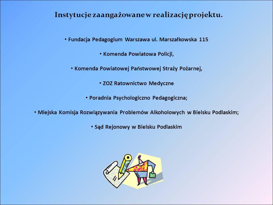 Zakres działania i stopień zaangażowania w realizację instytucji wspierających projekt 1.