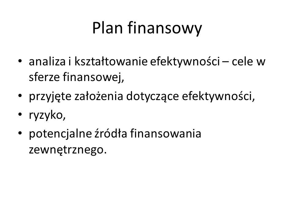 Plan finansowy analiza i kształtowanie efektywności – cele w sferze finansowej, przyjęte założenia dotyczące efektywności, ryzyko, potencjalne źródła finansowania zewnętrznego.