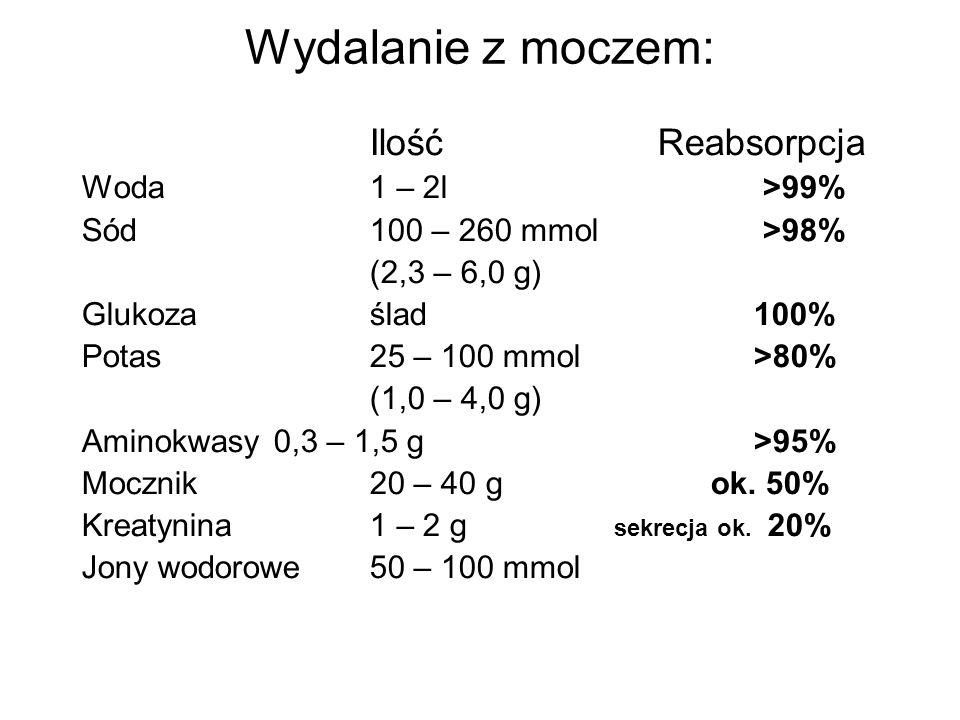 Pozawydalnicza funkcja nerek RAA Renalaza (wydzielnicza MAO) Regeneracja wodorowęglanów 1,25(0H) 2 D3 Erytropoetyna Glukoneogeneza Unieczynnianie insuliny
