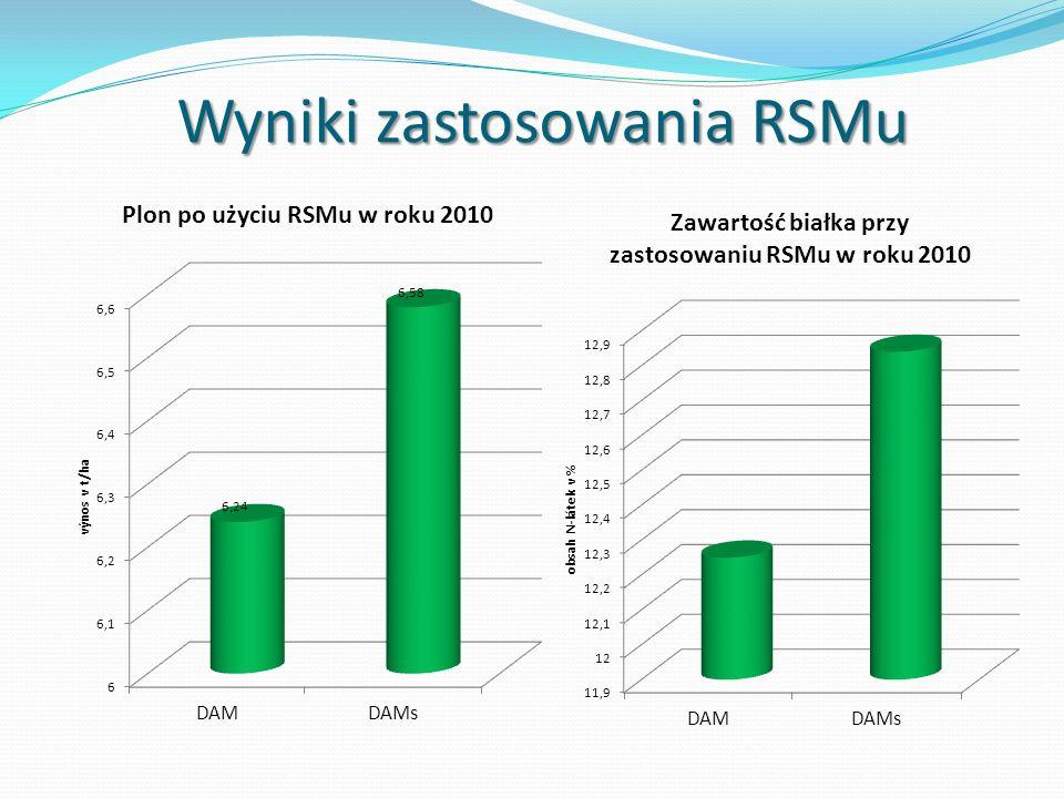 Wyniki zastosowania RSMu