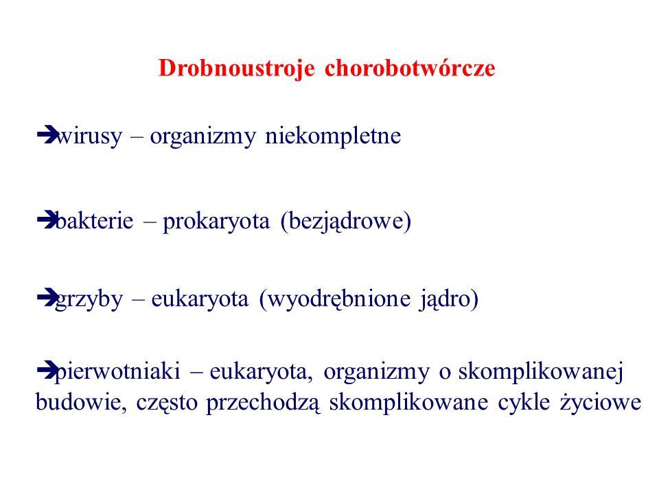 Drobnoustroje chorobotwórcze  wirusy – organizmy niekompletne  bakterie – prokaryota (bezjądrowe)  grzyby – eukaryota (wyodrębnione jądro)  pierwotniaki – eukaryota, organizmy o skomplikowanej budowie, często przechodzą skomplikowane cykle życiowe