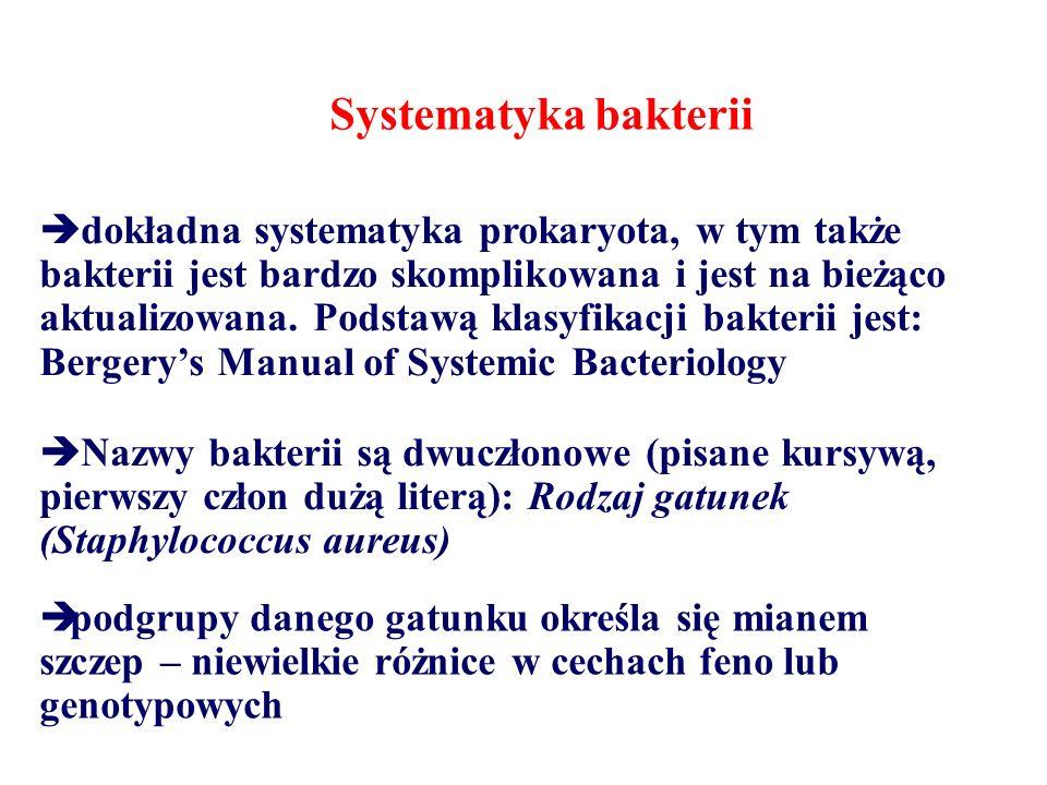 Systematyka bakterii  dokładna systematyka prokaryota, w tym także bakterii jest bardzo skomplikowana i jest na bieżąco aktualizowana.