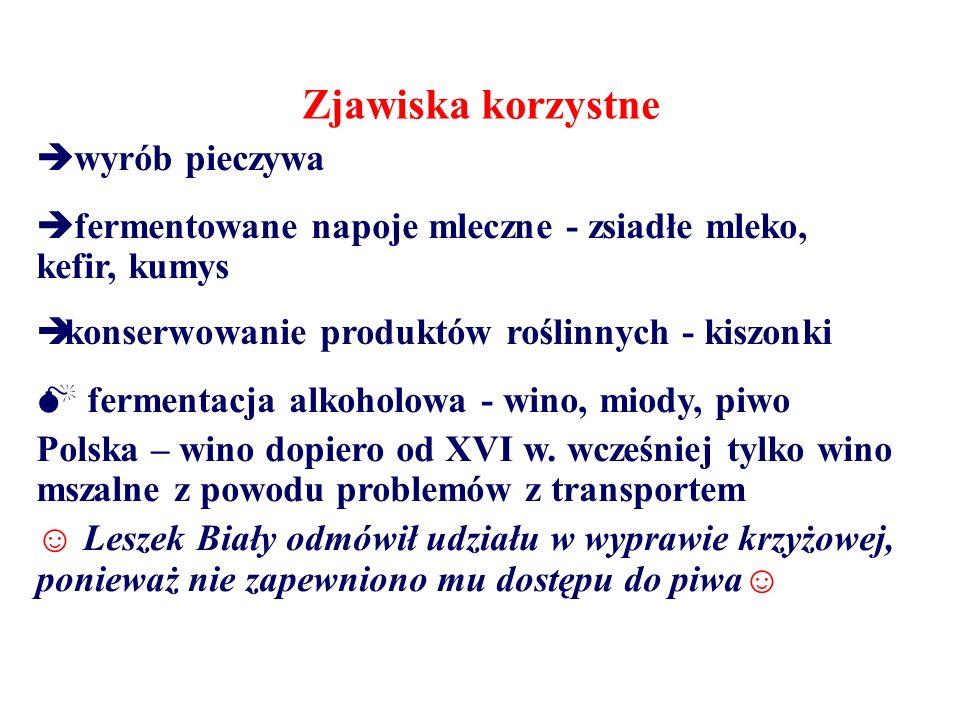  fermentacja alkoholowa - wino, miody, piwo Polska – wino dopiero od XVI w. wcześniej tylko wino mszalne z powodu problemów z transportem ☺ Leszek Bi
