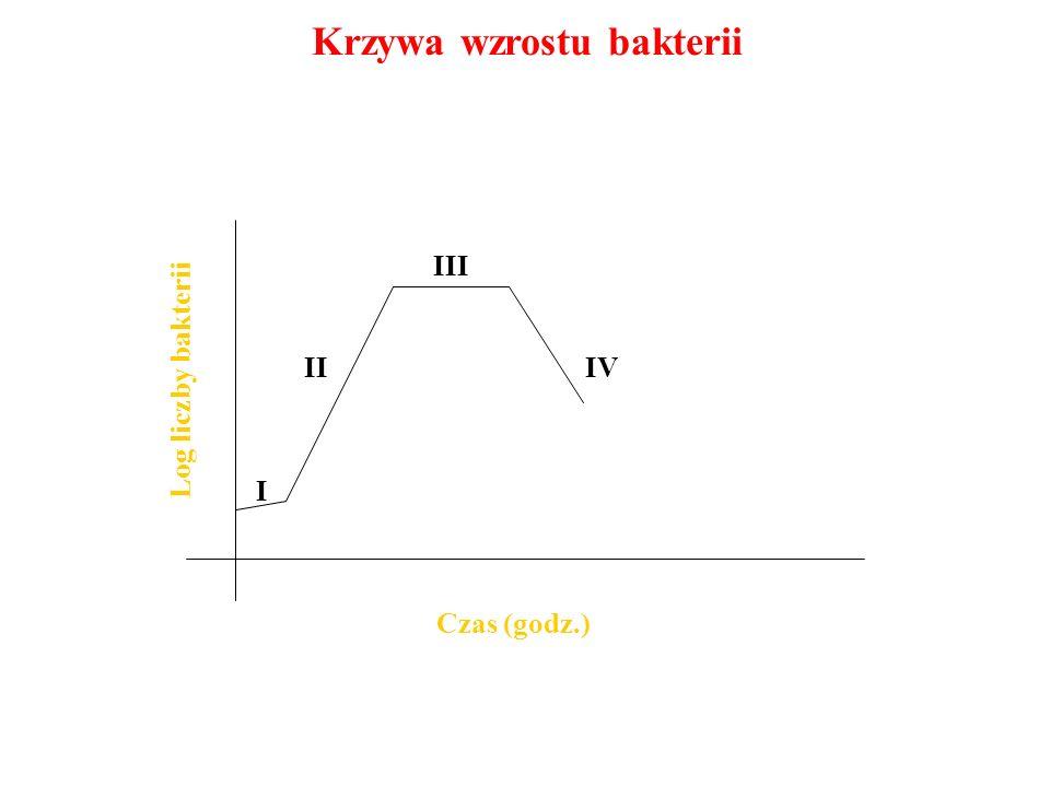 Krzywa wzrostu bakterii Czas (godz.) Log liczby bakterii I II III IV