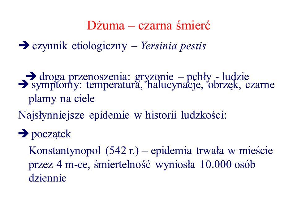 Dżuma – czarna śmierć  droga przenoszenia: gryzonie – pchły - ludzie  symptomy: temperatura, halucynacje, obrzęk, czarne plamy na ciele Najsłynniejsze epidemie w historii ludzkości:  początek Konstantynopol (542 r.) – epidemia trwała w mieście przez 4 m-ce, śmiertelność wyniosła 10.000 osób dziennie  czynnik etiologiczny – Yersinia pestis