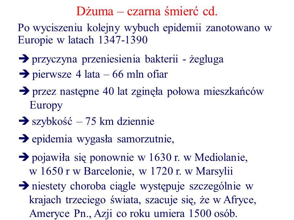 Dżuma – czarna śmierć cd. Po wyciszeniu kolejny wybuch epidemii zanotowano w Europie w latach 1347-1390  przyczyna przeniesienia bakterii - żegluga 
