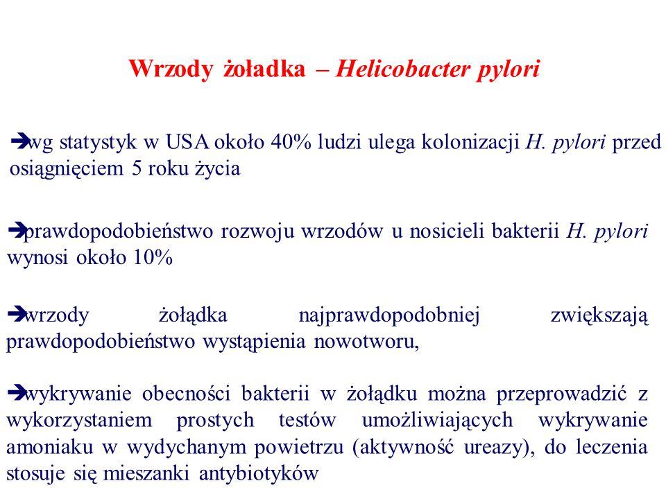Wrzody żoładka – Helicobacter pylori  wg statystyk w USA około 40% ludzi ulega kolonizacji H. pylori przed osiągnięciem 5 roku życia  prawdopodobień