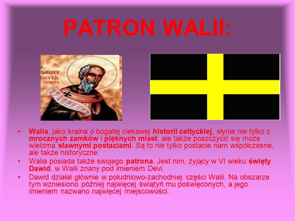 PATRON WALII: Walia, jako kraina o bogatej ciekawej historii celtyckiej, słynie nie tylko z mrocznych zamków i pięknych miast, ale także poszczycić si