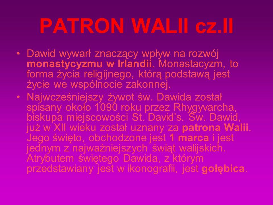 PATRON WALII cz.II Dawid wywarł znaczący wpływ na rozwój monastycyzmu w Irlandii. Monastacyzm, to forma życia religijnego, którą podstawą jest życie w
