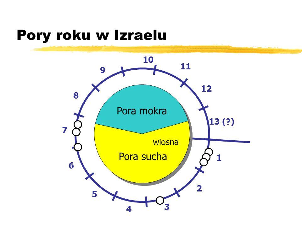 1 2 3 4 5 6 7 8 9 10 11 12 13 ( ) Pora mokra Pora sucha Pory roku w Izraelu wiosna