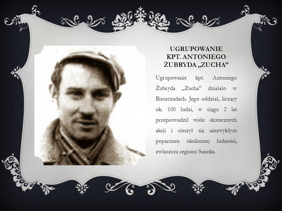 """UGRUPOWANIE KPT. ANTONIEGO ŻUBRYDA """"ZUCHA"""" Ugrupowanie kpt. Antoniego Żubryda """"Zucha"""" działało w Bieszczadach. Jego oddział, liczący ok. 100 ludzi, w"""