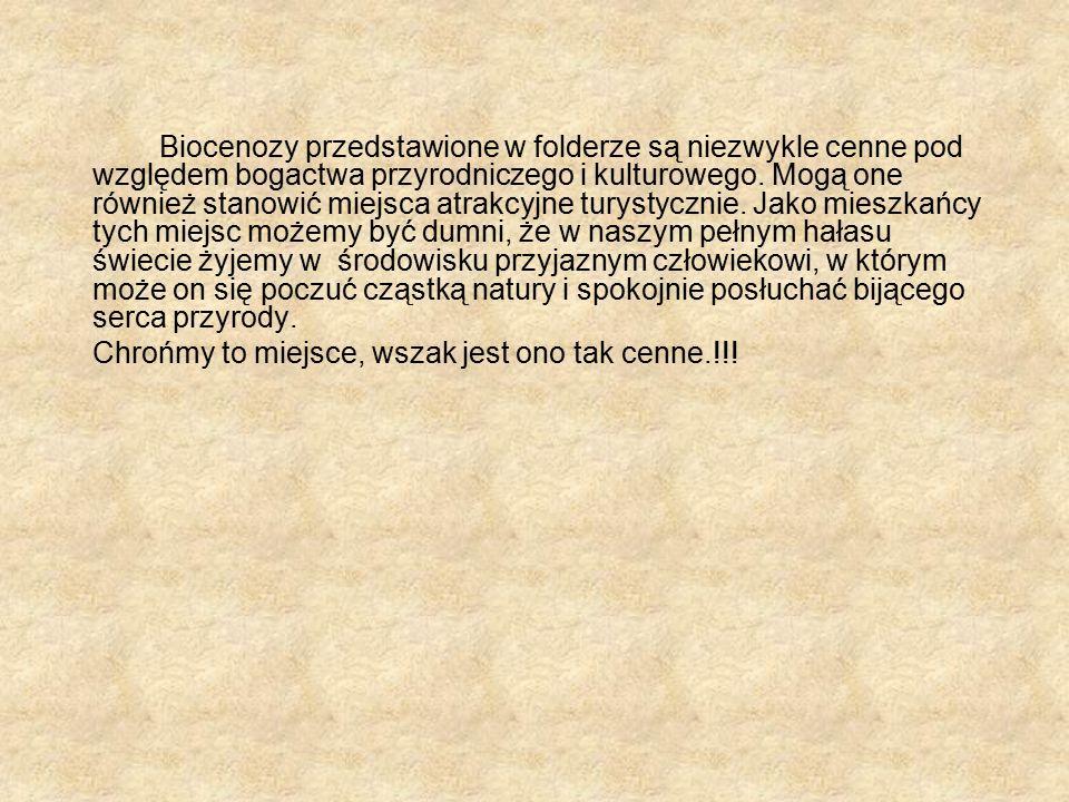 Biocenozy przedstawione w folderze są niezwykle cenne pod względem bogactwa przyrodniczego i kulturowego.