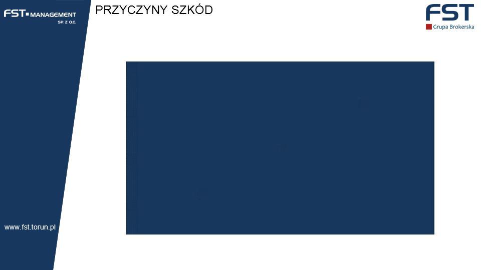 PRZYCZYNY SZKÓD www.fst.torun.pl