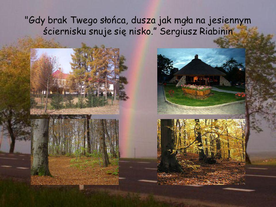 Gdy brak Twego słońca, dusza jak mgła na jesiennym ściernisku snuje się nisko. Sergiusz Riabinin